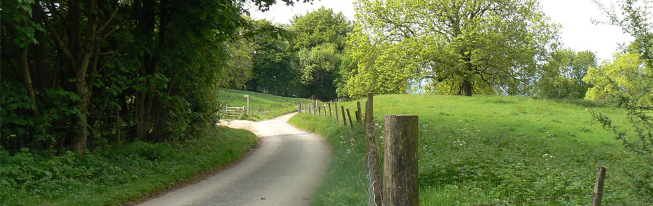 Winding Rural Road - Banner Image